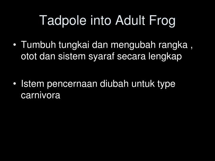 Tadpole into Adult Frog