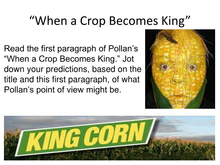 """""""When a Crop Becomes King"""""""