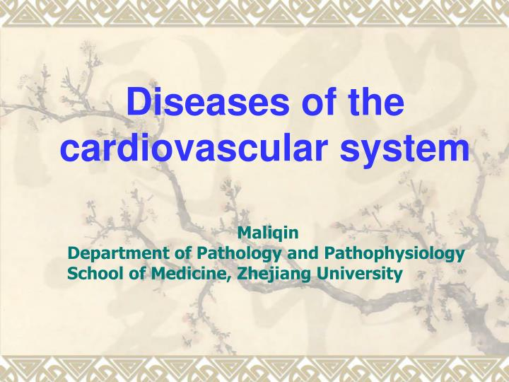 diseases of the cardiovascular system n.