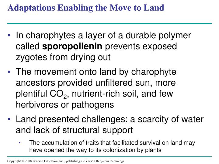 Adaptations Enabling the Move to Land