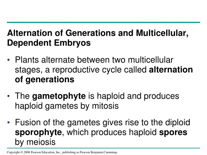 Alternation of Generations and Multicellular, Dependent Embryos