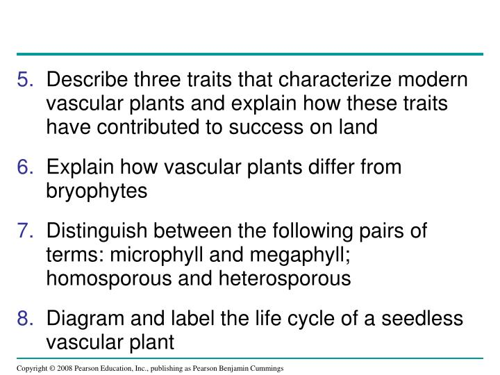 Describe three traits that characterize modern vascular plants and explain how these traits have contributed to success on land