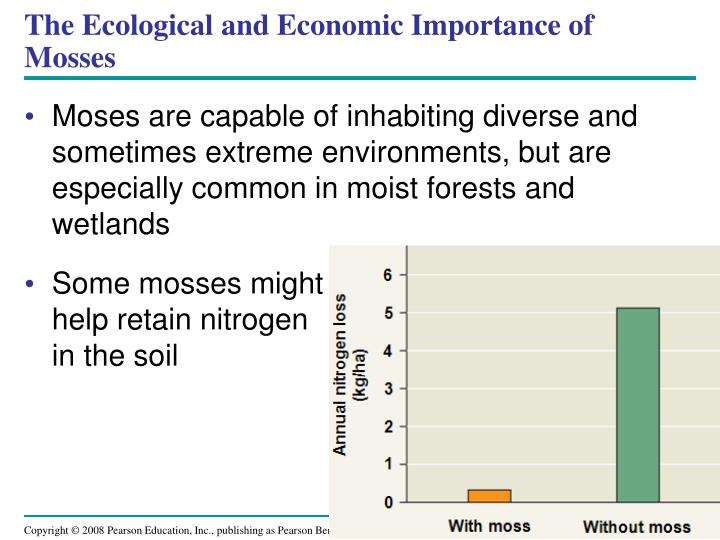 The Ecological and Economic Importance of Mosses
