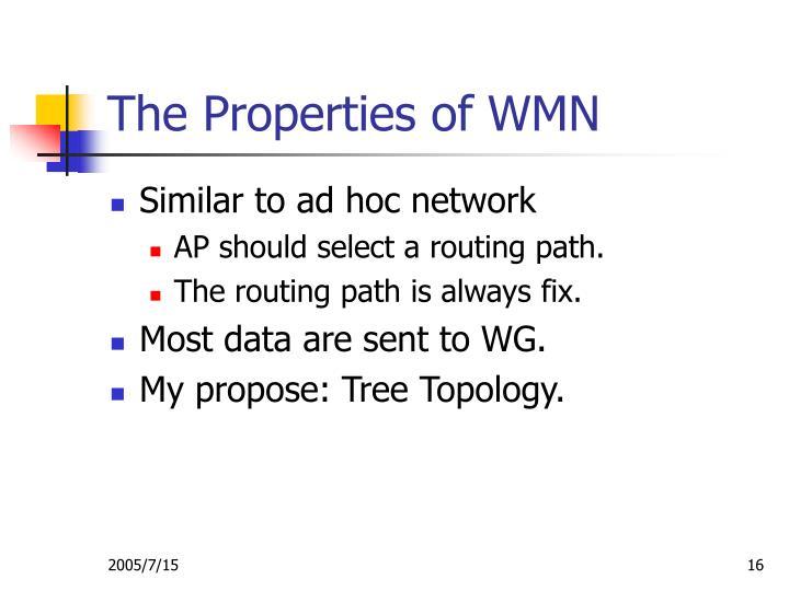 The Properties of WMN