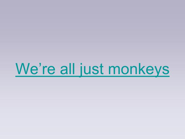 We're all just monkeys