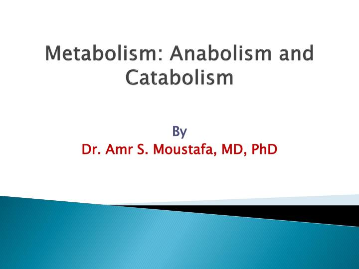 PPT - Metabolism: Anabolism and Catabolism PowerPoint Presentation