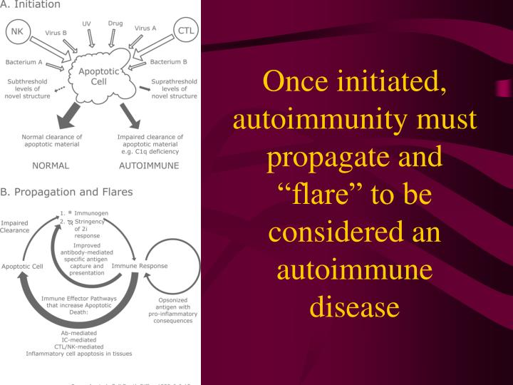 """Once initiated, autoimmunity must propagate and """"flare"""" to be considered an autoimmune disease"""