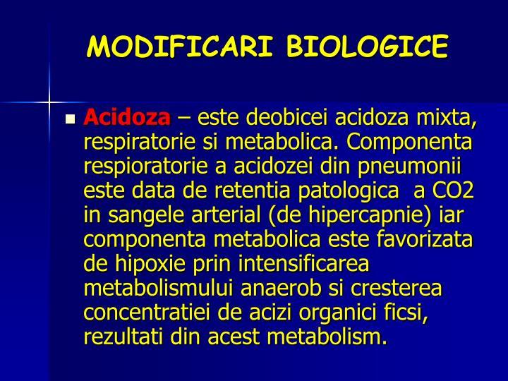 MODIFICARI BIOLOGICE