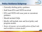 policy guidance subgroup