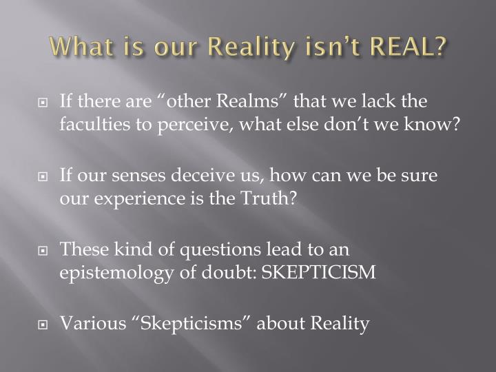 What is our Reality isn't REAL?