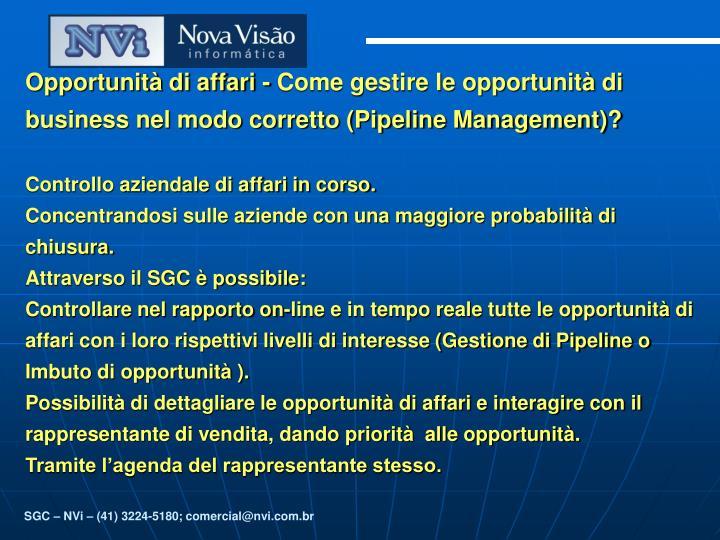 Opportunità di affari - Come gestire le opportunità di business nel modo corretto (Pipeline Manage...