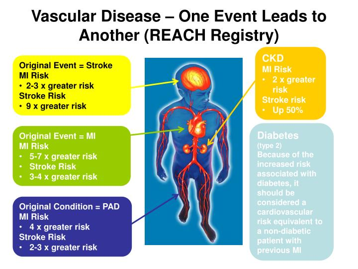 Vascular Disease – One Event Leads to Another (REACH Registry)