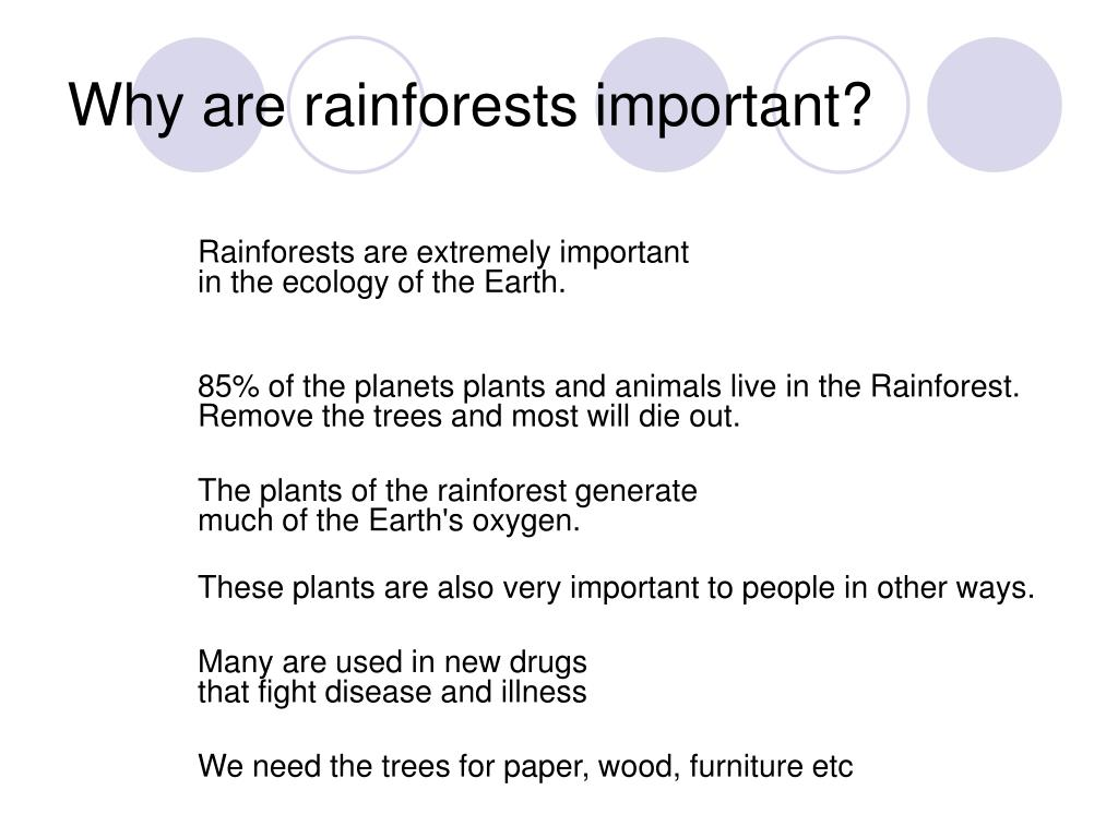 Ppt Tropical Rainforests Powerpoint Presentation Free