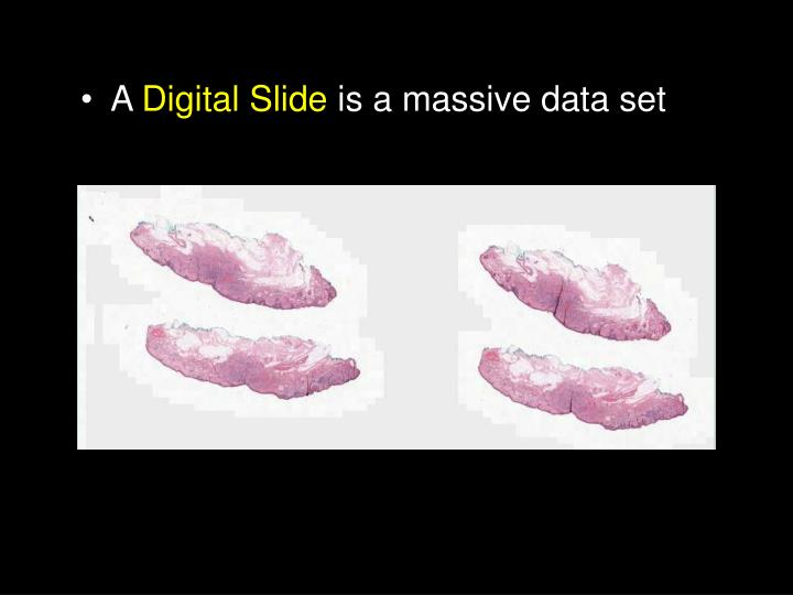 Whole Slide Imaging
