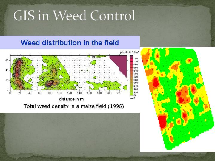 GIS in Weed Control