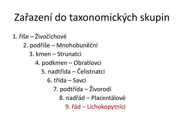 Za azen do taxonomick ch skupin
