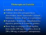 fitoterapia en gastritis