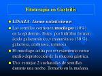 fitoterapia en gastritis1