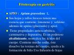 fitoterapia en gastritis2