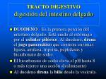 tracto digestivo digesti n del intestino delgado
