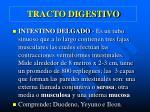 tracto digestivo5