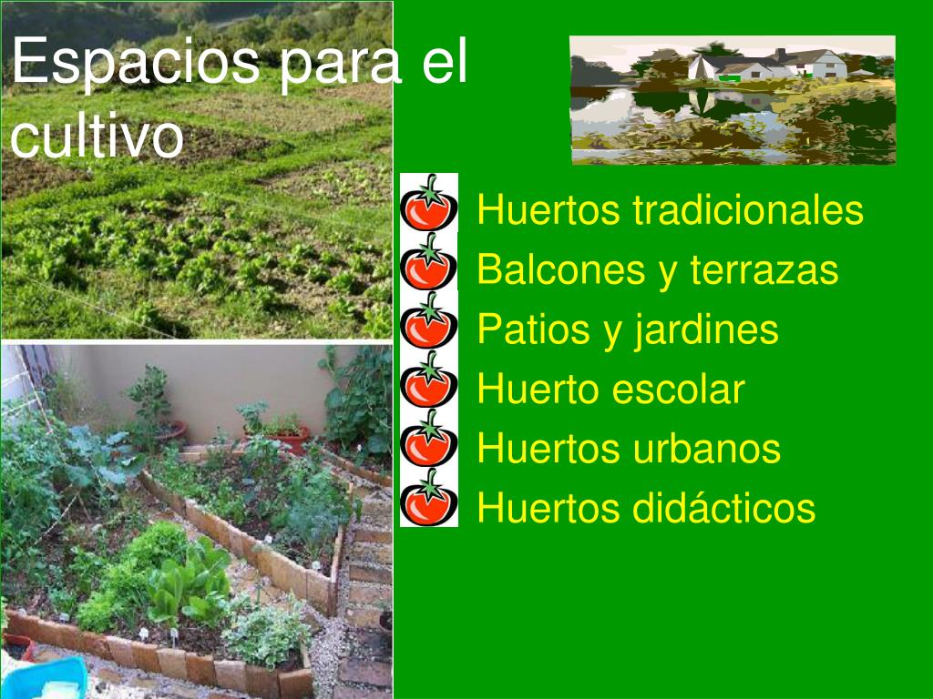 Ppt El Huerto Ecológico Powerpoint Presentation Free