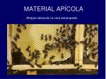 material ap cola3
