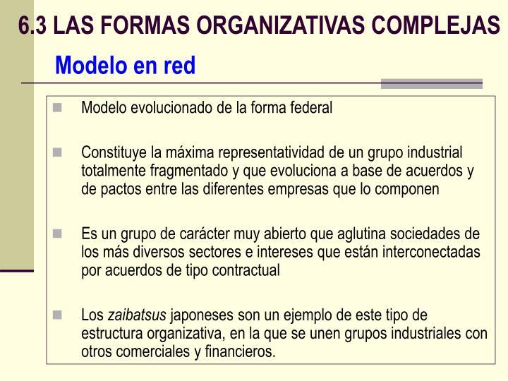 6.3 LAS FORMAS ORGANIZATIVAS COMPLEJAS