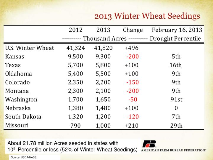 2013 Winter Wheat Seedings