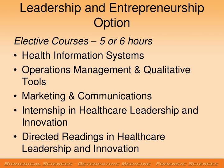Leadership and Entrepreneurship Option
