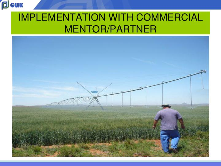 IMPLEMENTATION WITH COMMERCIAL MENTOR/PARTNER
