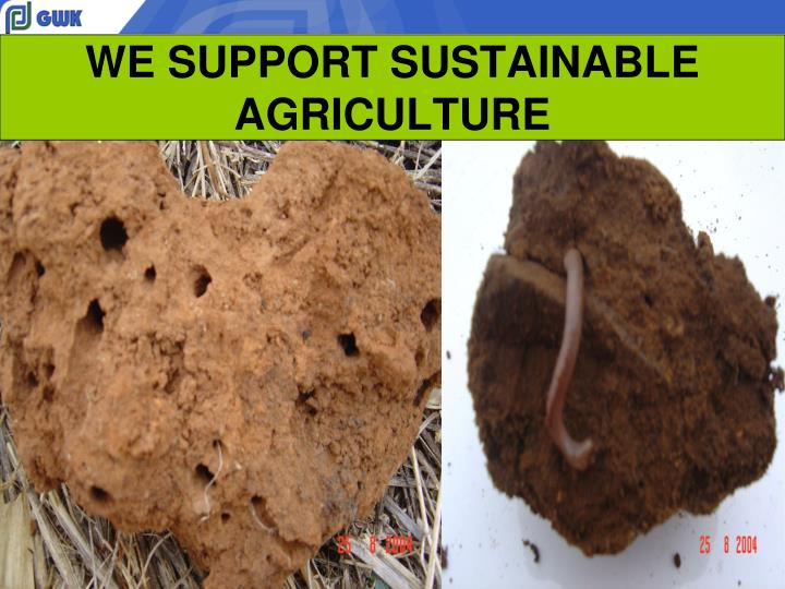 WE SUPPORT SUSTAINABLE AGRICULTURE