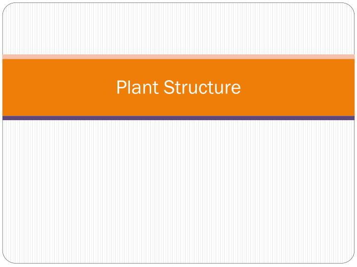 plant structure n.