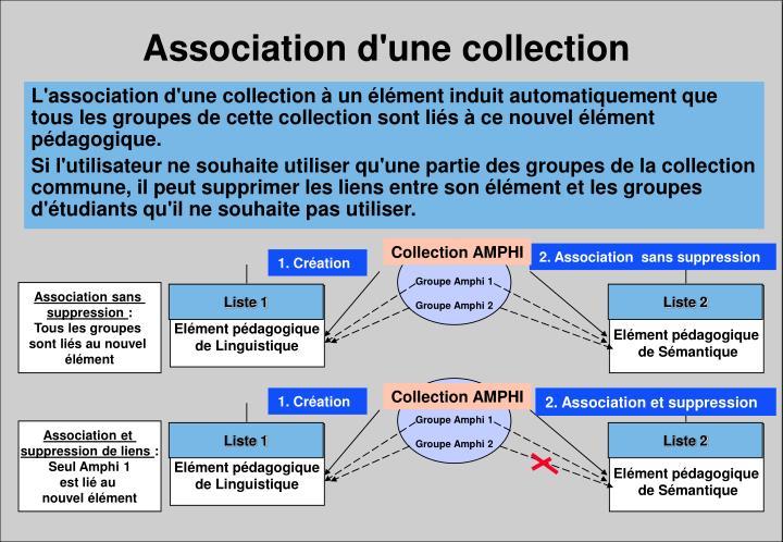 Association d'une collection