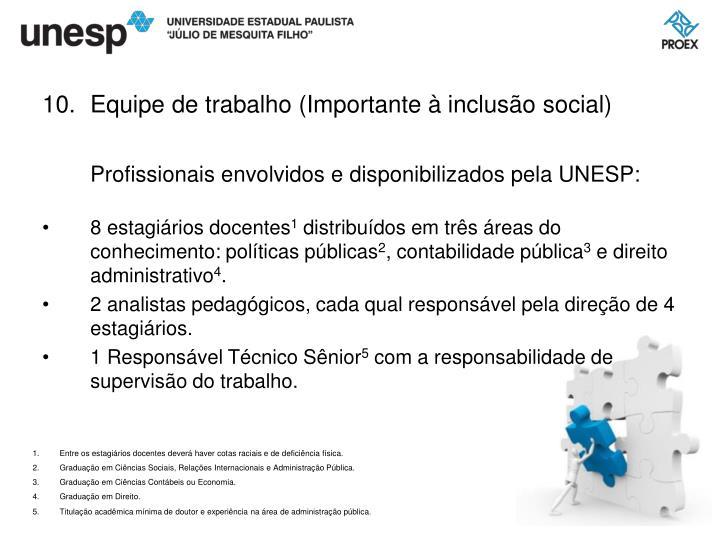 Equipe de trabalho (Importante à inclusão social)
