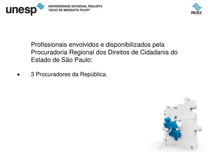 Profissionais envolvidos e disponibilizados pela Procuradoria Regional dos Direitos de Cidadania do Estado de São Paulo: