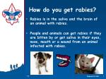 how do you get rabies