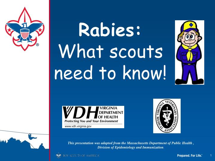 rabies what scouts need to know n.