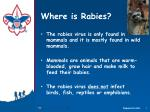 where is rabies