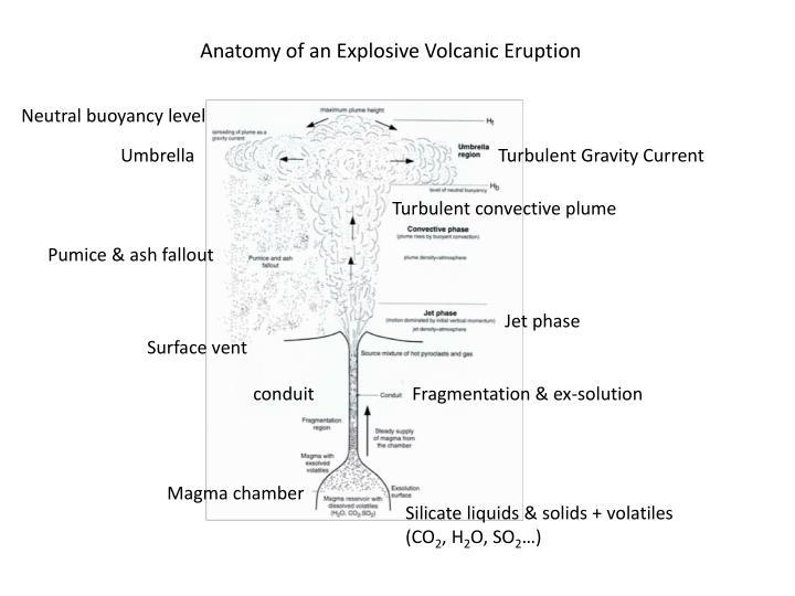 Anatomy of an Explosive Volcanic Eruption