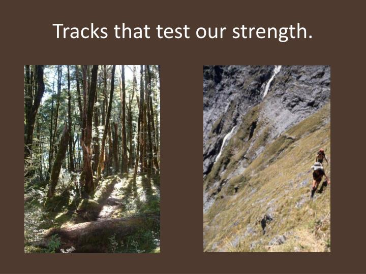Tracks that test our strength.