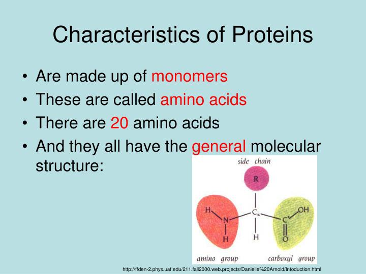 Characteristics of proteins