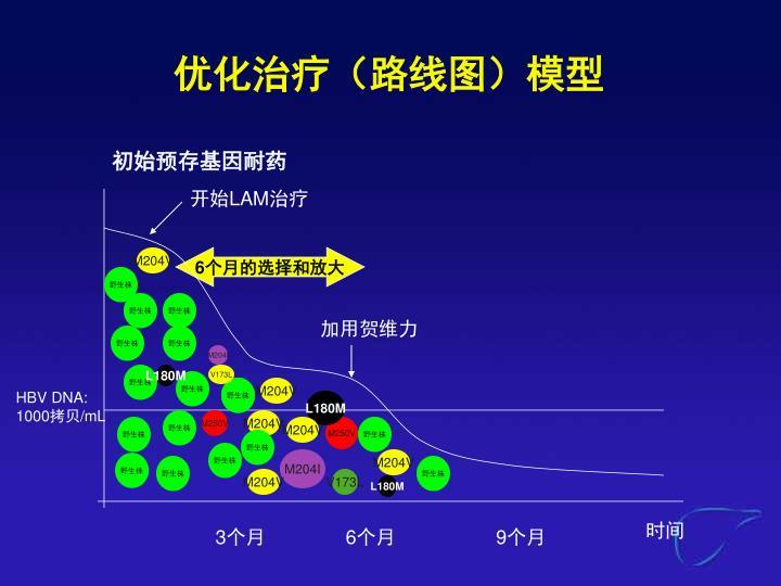 优化治疗(路线图)模型