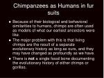 chimpanzees as humans in fur suits