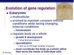 evolution of gene regulation1