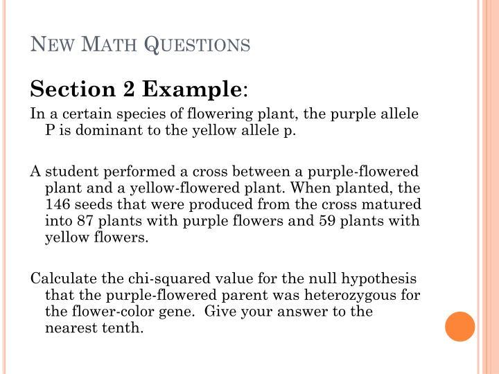 New Math Questions