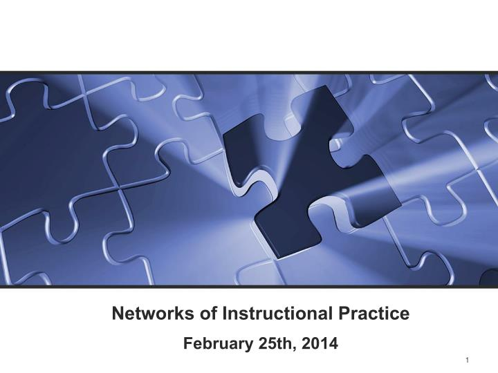 networks of instructional practice n.