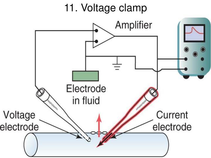 11. Voltage clamp