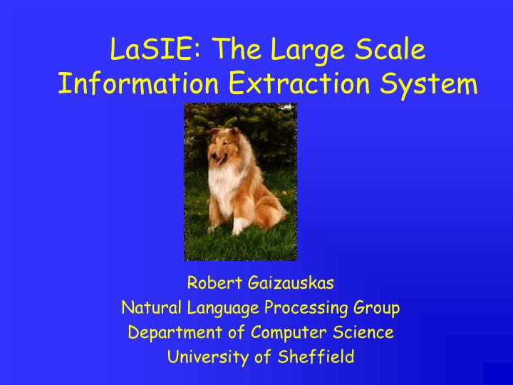 lasie the large scale information extraction system n.
