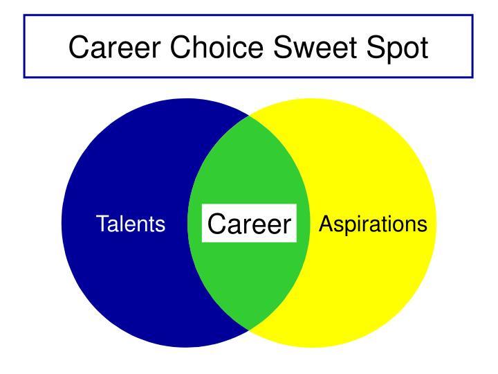 Career Choice Sweet Spot